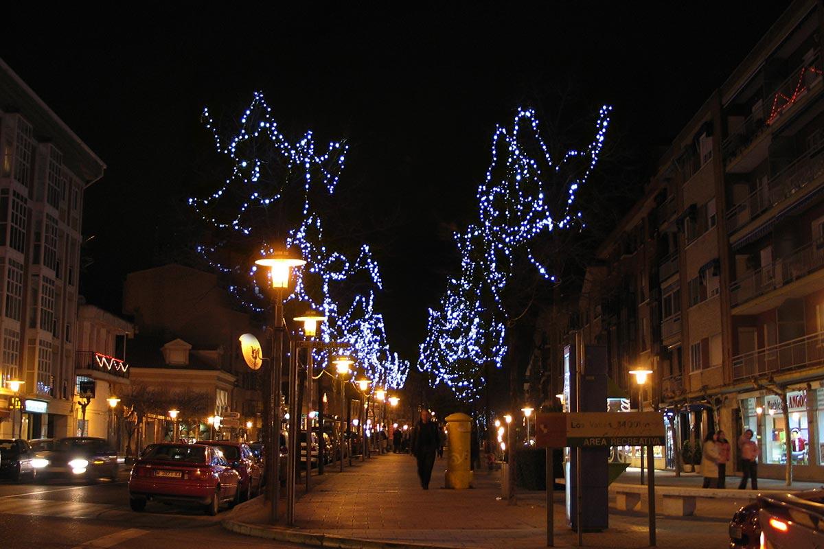 Árboles naturales iluminados con guirnalda LED blanco